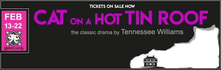 Cat on a Hot Tin Roof Banner